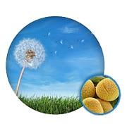 Elimineer allergenen