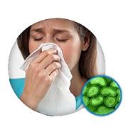Elimineer virussen